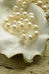 Perle Pearl Perla Pérola İnci פנינה
