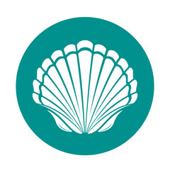 Scallop sea shell