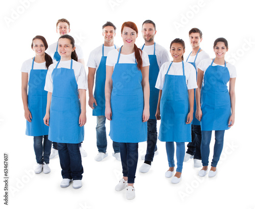 Diverse group of professional cleaners