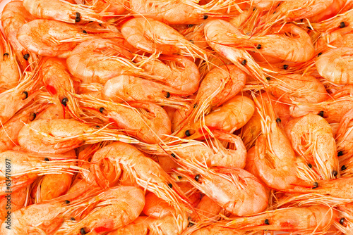 Shrimp cocktail background with a close up