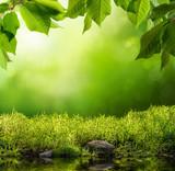 Grüne Natur als Hintergrund