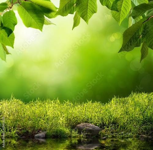 Leinwanddruck Bild Grüne Natur als Hintergrund