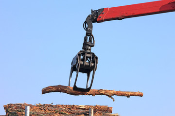 Manipulation de bois