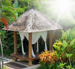 bower in a tropical garden