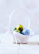 Colorful Quail Eggs in a Basket