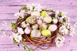 Composition with Easter eggs and blooming branches in nest,