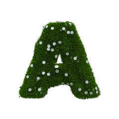 Buchstabe A Sommerwiese