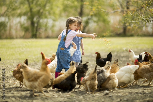 Two little girl feeding chickens - 63496033