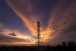 Silhouettes Telecommunication tower - 63496449