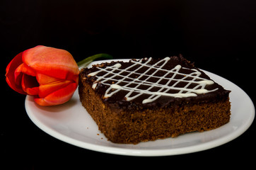 chocolate cake and red tulip