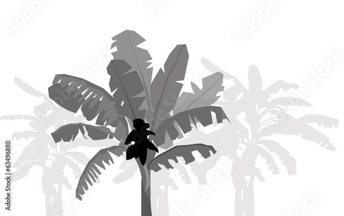 Banana and banana tree silhouette