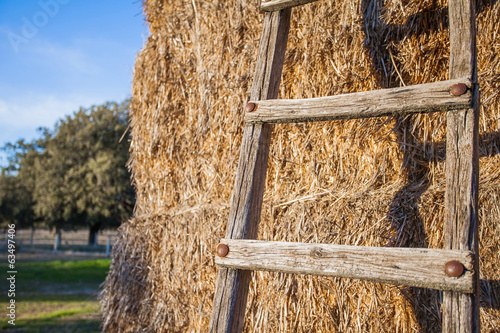 Ladders leaning on bales of hay