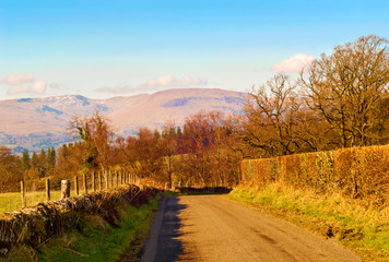 Road in the Scottish countryside