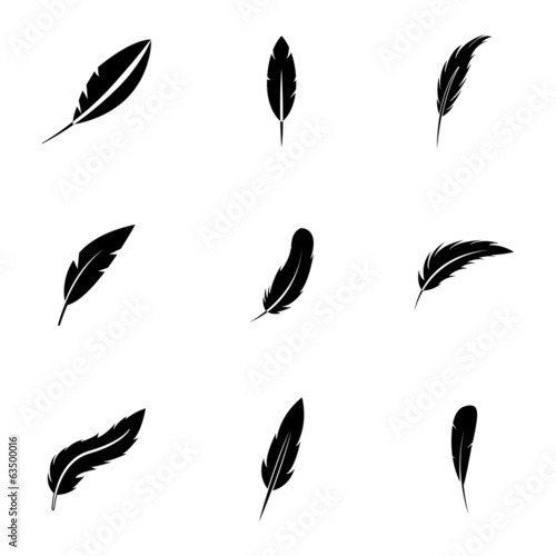 Vector black feather icons set - 63500016