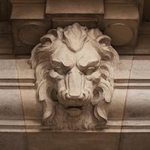 Lion féroce museau sculpté dans la pierre