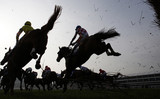 Fototapety Horse Racing jumping fence