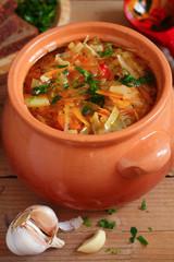 Russian cabbage soup - schi
