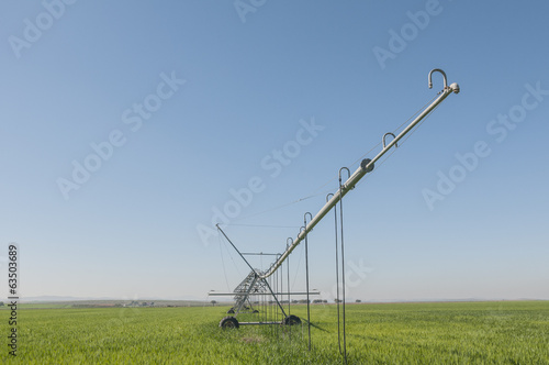 irrigation series 02