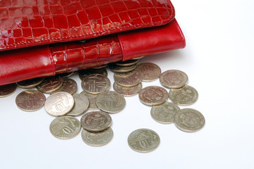 coins with purse