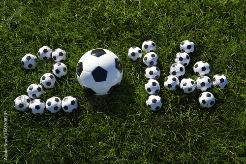 Message for 2014 Made with Football Soccer Balls on Grass