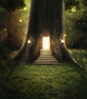 Enchanted forest.