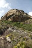 Parco statale di Pedra da Boca, Paraiba Brasil - 63510887