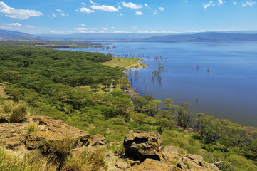 African landscape, bird's-eye view on lake Nakuru