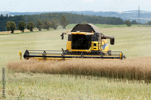 combine harvesting rape - 63516089