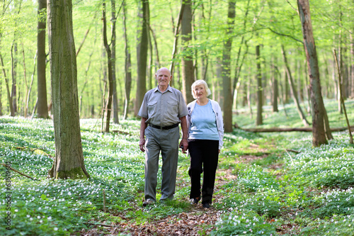Healthy loving senior couple relaxing in beautiful summer forest