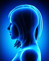 Anatomy of female head