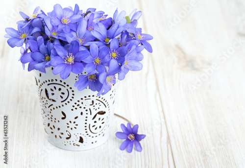 hepatica nobilis flowers on wooden surface