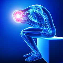 Anatomy of male brain pain in blue