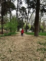 Doğada çocuk