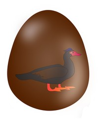 Easter egg with Muscovy duck