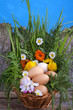 .Eggs in a basket with spring plants and flowers