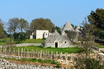 Vineyard and trulli near Cisternino (Italy)
