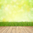 canvas print picture - Bokeh Background Springtime / Wood / Lawn