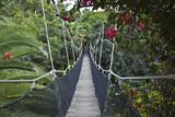 Fototapeta Fototapety mosty linowy / wiszący - most © farfalla