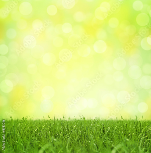 Bokeh Background Springtime