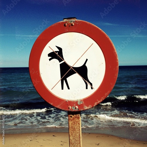 no dog on the beach