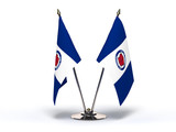 Miniature Flag of Toledo Ohio