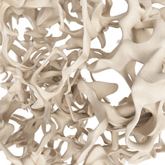 scientific illustration - osteoporosis bone structure