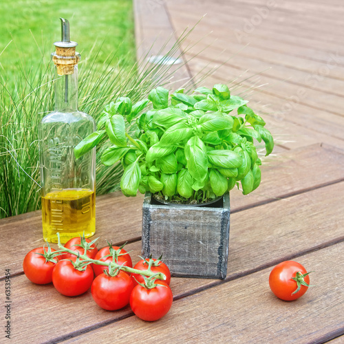 Basil, olive oil and tomatoes