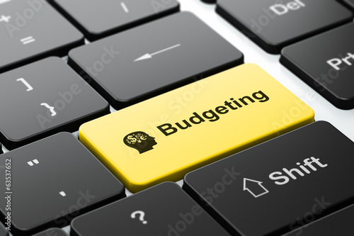 Finance concept: Head With Finance Symbol and Budgeting on