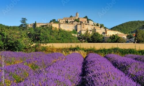 Fotobehang Lavendel la lavande en provence