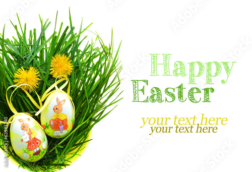 Easter eggs in fresh green grass - white background
