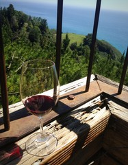 Wine with View