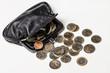 Money, finances. Euro coins