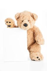 Angry teddy bear holding blank board