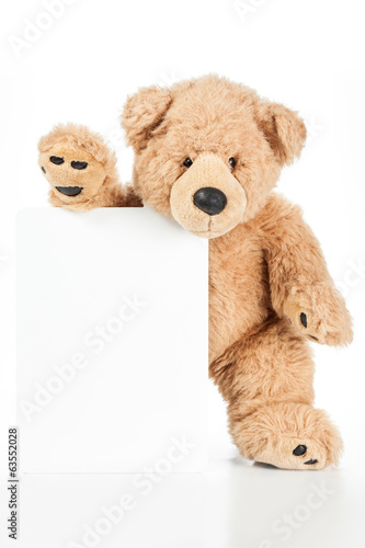 Cute teddy bear holding blank board